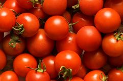 Rote Tomaten Lizenzfreie Stockbilder