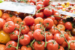 Rote Tomaten auf dem Stamm in einem Markt in Paris, Frankreich Lizenzfreie Stockfotografie