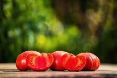 Rote Tomaten auf dem Tisch auf einem grünen Hintergrund Stockfotografie