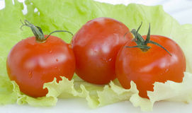 Rote Tomaten auf grünem Blatt des Kohls Stockfotografie