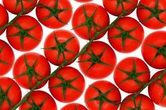 Rote Tomaten auf lokalisiertem backround Lizenzfreie Stockfotografie