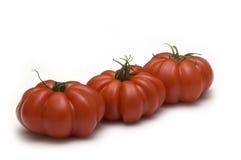 Rote Tomaten auf weißem backgrou Lizenzfreies Stockfoto