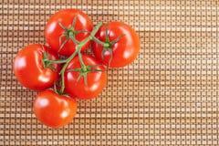 Rote Tomaten des Nahaufnahmezweigs fünf Stockbild