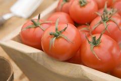 Rote Tomaten in einem hölzernen Trug Stockfotos