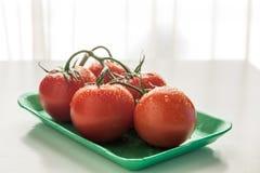 Rote Tomaten in einer Platte Stockbild