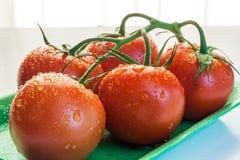 Rote Tomaten in einer Platte Lizenzfreie Stockfotografie