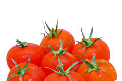 Rote Tomaten getrennt Lizenzfreie Stockbilder