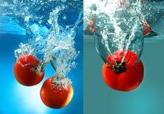 Rote Tomaten im Wasser Lizenzfreie Stockfotos