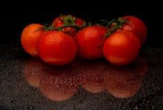 Rote Tomaten im Wassertropfen Stockbild