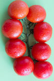 Rote Tomaten mit grünen Blättern Beschneidungspfad eingeschlossen Lizenzfreie Stockfotografie