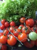 Rote Tomaten mit Salat Cherry Tomatoes Lizenzfreie Stockfotografie