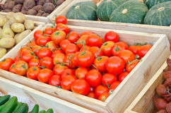 Rote Tomaten und Gemüse am Landwirtmarkt Lizenzfreie Stockbilder