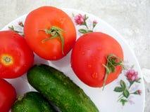 Rote Tomaten und grüne Gurken lizenzfreie stockfotos