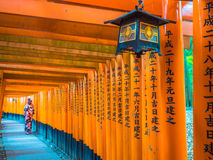 Rote Tori Gate bei Fushimi Inari Kyoto, Japan Stockbilder