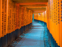 Rote Tori Gate bei Fushimi Inari Kyoto, Japan Stockfotografie