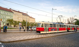 Rote Tram in Prag Stockbilder