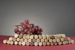 Rote Traube und Gruppe Weinkorken lizenzfreie stockbilder