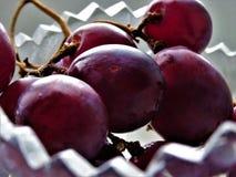 Rote Trauben lizenzfreies stockfoto