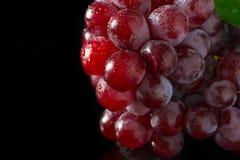 Rote Trauben auf schwarzem Acryl Stockfoto