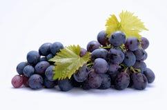 Rote Trauben mit Blättern Lizenzfreies Stockfoto
