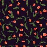 Rote Tulpe nahtlosen Mit Blumenwhit Muster des Vektors vektor abbildung