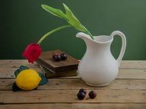 Rote Tulpe und Bücher Stockfoto
