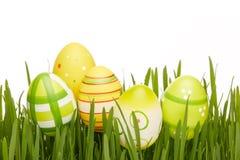 Rote Tulpe und farbige Eier Stockbilder