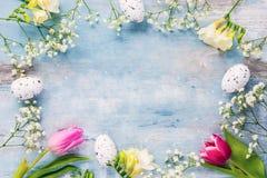 Rote Tulpe und farbige Eier Ein Rahmen von Frühlingsblumen und von Ostereiern Kopieren Sie Platz Stockbild