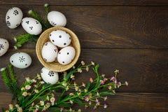 Rote Tulpe und farbige Eier Glückliche Ostereier, die auf Holz geschmerzt werden, aalen sich Lizenzfreie Stockfotografie