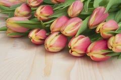 Rote Tulpen Lizenzfreie Stockfotografie