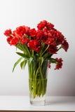 Rote Tulpen in einem Glasvase Stockbilder