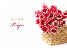 Rote Tulpen in einem Korb Stockbild