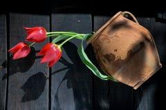 Rote Tulpen im alten Tongefäß stockfoto