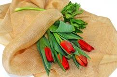 Rote Tulpen - rote Blume - Tulpenblume Stockfotos