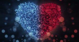 Rote und blaue Rose Flower Petals In Lovely-Herz-Form-Hintergrund-Schleife 4k stock video footage