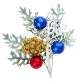Rote und blaue Weihnachtskugeln auf Zweig Lizenzfreies Stockfoto
