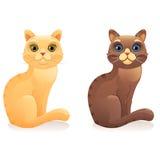 Rote und braune Katze Lizenzfreie Stockfotos