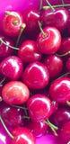 Rote und frische Kirschen stockfoto