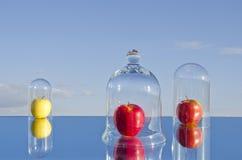 Äpfel auf Spiegel in den Glasglocken lizenzfreie stockbilder