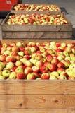 Rote und gelbe Äpfel in den Rahmen Stockfotos