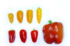 Rote und gelbe Pfeffer in Folge Stockfotografie