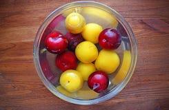 Rote und gelbe Pflaumen im Glasteller mit Wasser Stockbilder