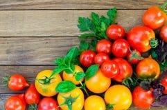 Rote und gelbe Tomaten, Petersilie, Basilikum auf einem Holztisch lizenzfreie stockfotografie