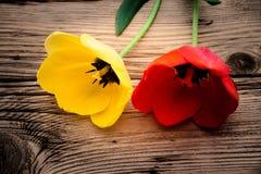 Rote und gelbe Tulpen auf einem rustikalen Stockfoto