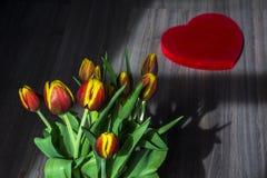 Rote und gelbe Tulpen mit großem rotem Herzen Lizenzfreie Stockfotos