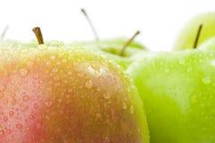Rote und grüne Äpfel Lizenzfreie Stockbilder