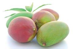 Rote und grüne Mangofrüchte Lizenzfreie Stockfotos