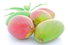 Rote und grüne Mangofrüchte Stockbild