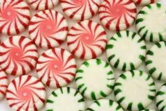 Rote und grüne Minzen lizenzfreie stockbilder