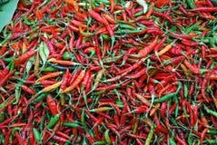 Rote und grüne Paprikapfeffer lizenzfreies stockfoto